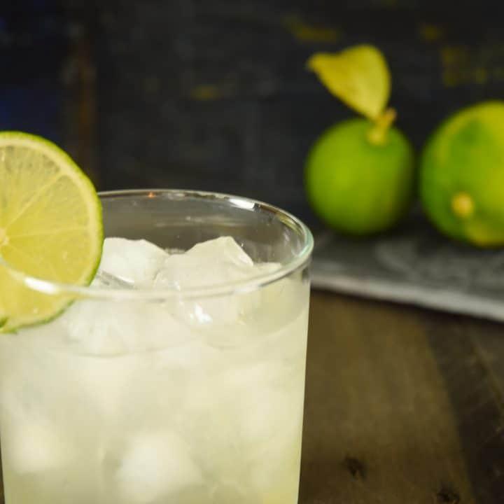 Keto-Friendly Margarita